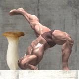 激ムズ!キノコと筋肉